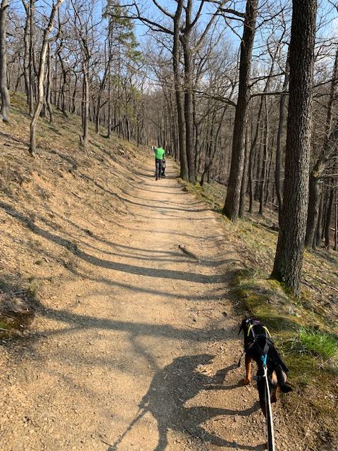 Rund um Wernigerode – ein kleiner Wanderbericht
